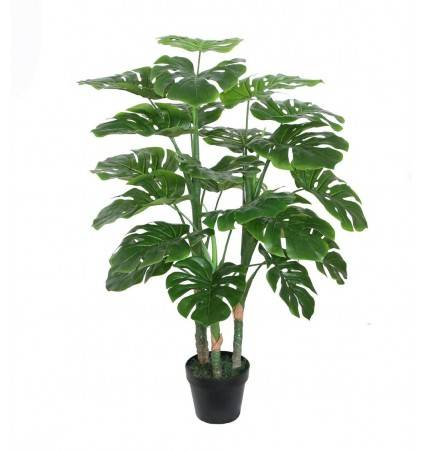 POTTED 110CM MONSTERA
