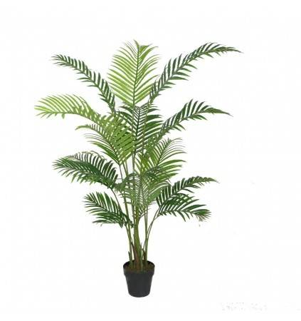 POTTED 160CM ARECA PALM