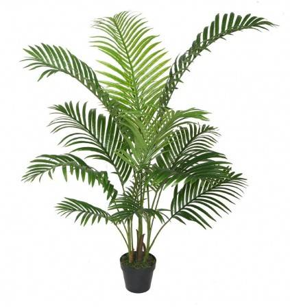 POTTED 120CM ARECA PALM