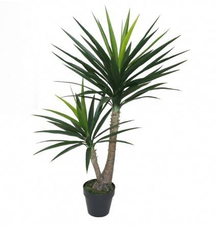 POTTED 120CM YUCCA